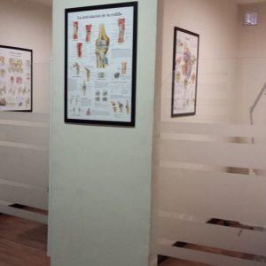 Instalaciones clinica fisiocasa